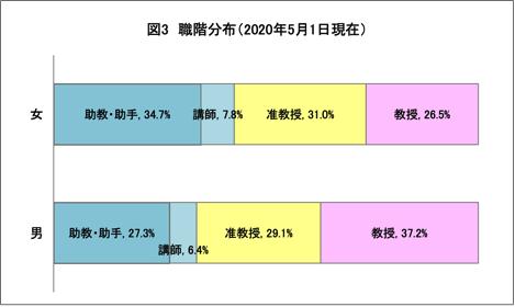 男女別教員の職階分布